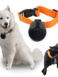 Digital Video Camera Dogs Collar Cats Puppy Monitor Recorder Pet Collar Eye Cam