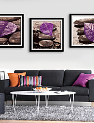 E-HOME® Framed Canvas Art, Stone And Purple Leaf Framed Canvas Print Set of 3