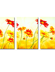 VISUAL STAR®Flower Oil Canvas Painting Modern Living Room Decoration Ready to Hang