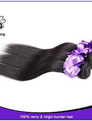 """economici dritti pacchi dei capelli umani capelli malesi dritto 3pcs 8 """"-30"""" malesi dritto capelli vergini"""