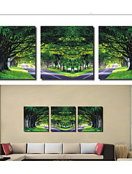 Prints Poster boulevard Home Decorative  Pictures Print On Canvas  3pcs/set (Without Frame)
