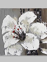pintados à mão flores valor pinturas sem moldura