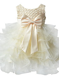 BHL Infant Girl's Floral Dress Sleeveless Party Ball Dress Wedding Dresses Pageant Party Dresses For 0~2Y Baby Girls