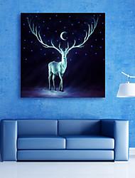 Animal / Paisagem Impressão em tela Um Painel Pronto para pendurar , Quadrada