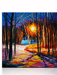 VISUAL STAR®Palette Knife Oil Painting On Canvas For Decor Ready to Hang
