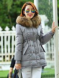 Women's Casual Artificial Fur Collar Plus Sizes Long Sleeve Down Coat