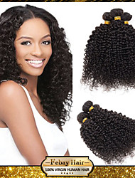 Cheap Rosa Hair Products 6A Unprocessed Peruvian Virgin Hair Kinky Curly 1Bundle/Lot 100% Human Hair