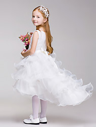 A-line Flower Girl Dress - Lace / Tulle / Polyester Sleeveless Jewel with
