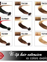 Neitsi 20 Zoll 1g / s 100g ombre Keratinschmelzverfahren Nagels U Spitze gerade 100% Echthaar Haarverlängerungen