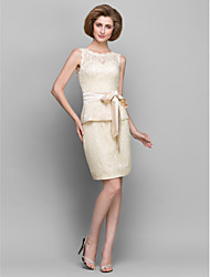 Lanting Bride Sheath / Column Mother of the Bride Dress Short / Mini Sleeveless Lace with Lace