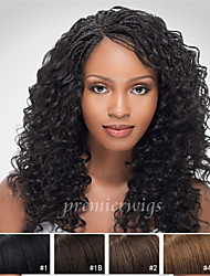 12''-26''Long Curly Multicolor Wigs Indian Virgin Hair Lace Front Wigs With Baby Hair For Black Women