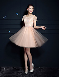 Cocktail Party Dress A-line Scoop Short/Mini Tulle