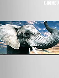 E-HOME® Stretched Canvas Art Elephant Decoration Painting One Pcs