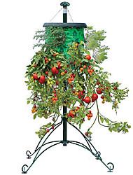plantadores de tomate y verduras Patas arriba