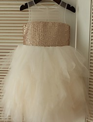 Ball Gown Knee-length Flower Girl Dress - Tulle / Sequined Sleeveless Scoop with