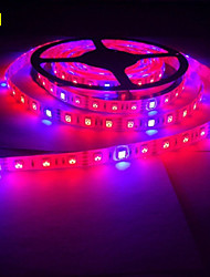 5M MORSEN® 5050 Grow LED Flexible Strip Tape Light 4 Red 1 Blue Aquarium Greenhouse Hydroponic Plant Growing Lamp (12V)