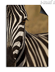E-HOME® Magnetic Print Replaceable Art Zebra Decorative Painting Multi Style Optional