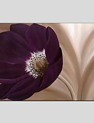 Peint à la main A fleurs/BotaniqueStyle européen / Modern Un Panneau Toile Peinture à l'huile Hang-peint For Décoration d'intérieur