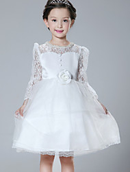 A-line Knee-length Flower Girl Dress - Lace / Tulle / Polyester Long Sleeve Jewel with