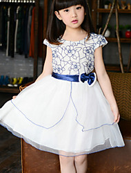 Girl's Blue / Red Dress , Lace Cotton Summer