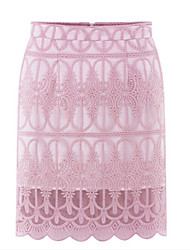 Women's  Casual Sexy Cute Skirts    (lace)