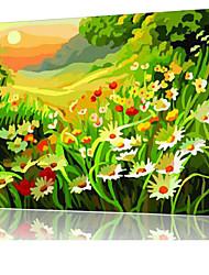 diy pintura a óleo quadro pintura digital divertimento família sozinha colorido vale x5024