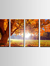 Four Panels Landscape Painting , Printed on Canvas  , Ready to Hang ,