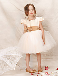 Girl Champagne Princess Dresses