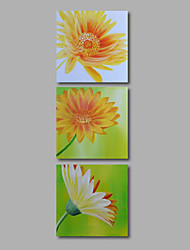 Ready to Hang Hand-Painted Oil Painting on Canvas Wall Art Contempory Abstract Flowers Yellow Daisies Three Panels