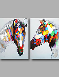 Ready to Hang Stretched Hand-Painted Oil Painting Canvas Animals Zebra Pop Art Home Deco Two Panels