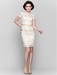 Lanting Bride® Sheath / Column Mother of the Bride Dress Short / Mini Short Sleeve Lace with Lace