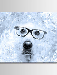 New Black and White Dog Blue Art Photography Decoration Painting