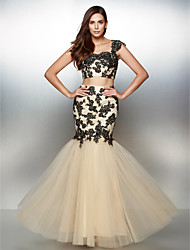 TS Couture® Formal Evening Dress - Two Pieces Fit & Flare Sweetheart Floor-length Lace / Tulle with Appliques