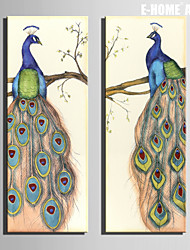 E-HOME® Stretched Canvas Art Peacock Decoration Painting  Set of 2