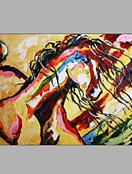 Abstract Horse Sketch Design Handmade Painting Free Shipping Cheap Price
