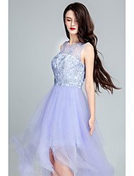 Cocktail Party Dress - Lavender Ball Gown Scoop Floor-length Tulle