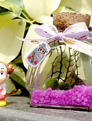 plantes simples de paysages écologiques micro verre paysage bouteille d'algues créative pot anniversaire est le cadeau de Saint-Valentin