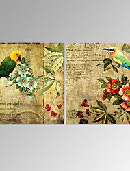 VISUAL STAR®Two Panels Flowers Canvas Artwork Birds Painting Picture Art Prints for Living Room Decor