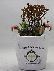 Others Plantas Flores artificiais