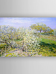 Oil Painting Impression Landscape Trees Blooming Hand Painted Canvas with Stretched Framed Ready to Hang