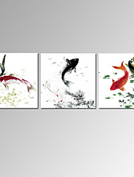 VISUAL STAR®3 Panel Fish Chinese Painting Prints for Home Decor Stretched Canvas Art Ready to Hang