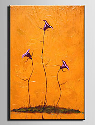 Oil Painting Decoration Flowers Hand Painted Canvas with Stretched Framed