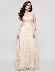 TS Couture® Formal Evening Dress - Champagne Plus Sizes / Petite Sheath/Column Sweetheart Floor-length Lace