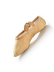 Ballet Shoes, Dance Shoes,Dance Sllipers
