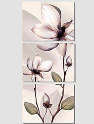ботанический / Модерн / Поп-арт Холст для печати 3 панели Готовы повесить , Горизонтальная