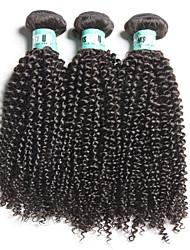 3 st / lot 8-28inch brasilianska kinky lockigt jungfru hår 100% brasiliansk människa hårväv buntar