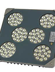 MORSEN®LED Explosion-Proof dust-proof lamp gas station Lamp 90W Outdoor Lights Tunnel Lights High Brightness