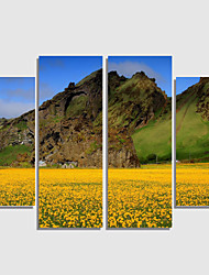 Home Decor Set Of 4 Landscape Pictures Canvas Print Art Abstract Wall Painting Flower