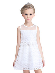 Girl's Cotton Summer Lace Mesh Gauze Flowers Bubble Skirt Princess Formal Dress