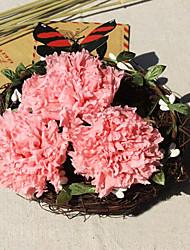 5см шесть цветы гвоздики / коробка сохранились свежие цветы